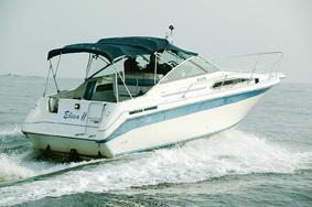 Sea Ray 250 DA